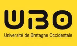ubo-jaune